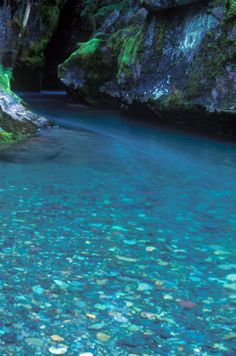 Absolutely beautiful Turquoise, Avalanche Creek, Glacier National Park, Montana