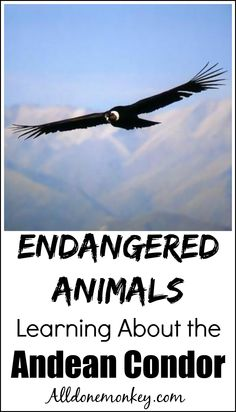 Any ideas for thesis statement about the Condor being endangered.?