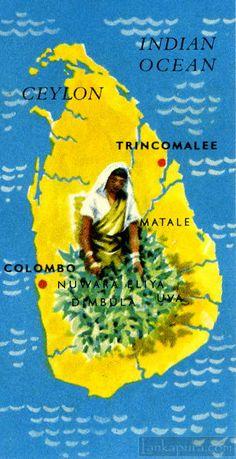 Ceylon Tea card