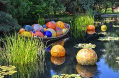 denver botanical gardens - chihuly