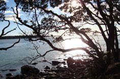 Gorgeous Tauranga, New Zealand