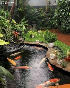 The best fish pond concept that you should try at home 23