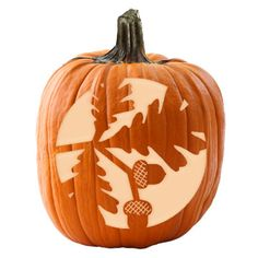 Make your pumpkins look picture-perfect for the fall season with these super cool stencils. Cattails, wheat stalks, a pinecone, a butterfly, a sunflower, and an owl are just a few of these creative designs. Download and print out one to try today!