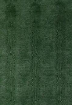 Wallcovering / Wallpaper   Komodo in Forest Green   Schumacher
