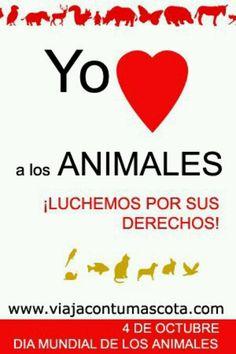 Yo amo a los animales...