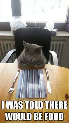 This is how I feel when people invite me to meetings around lunchtime.