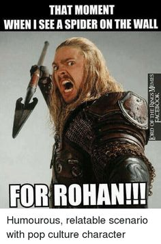 Image result for lord of the rings meme