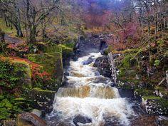 Bracklinn Falls at Callander, Stirling, Scotland.