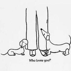Dachshund – Friendly and Curious Dachshund Drawing, Dachshund Tattoo, Dachshund Funny, Arte Dachshund, Mini Dachshund, Dachshund Puppies, Daschund, Weenie Dogs, Doggies