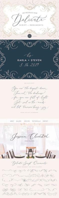 Delicate Elegant Script & Ornaments by Mila Garret on @creativemarket