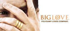 Hoje em dia tanto se fala em poliamor, mas a série Big Love da HBO tratou o tema há muito tempo. Ela é ótima por sinal. Big Love, Banner, Tv, Books, Movies, Poster, Weather, Banner Stands, Libros