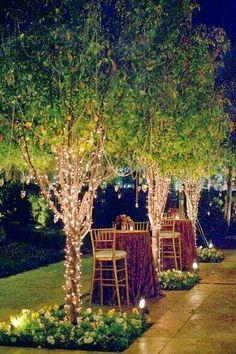Beautiful Backyard Lights at Night
