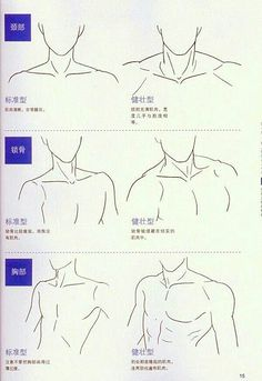 Human Figure Drawing Reference Neck and shoulders artist reference anatomy drawing tutorial. Human Figure Drawing, Figure Drawing Reference, Anatomy Reference, Art Reference Poses, Hand Reference, Learn Drawing, Drawing Lessons, Drawing Techniques, Drawing Tips