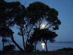Moon River | Full Moon At American River | Kangaroo Island | Australia | Photo By Peter Bassett