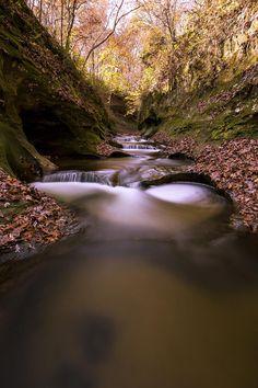 "Fall Creek Gorge (""Potholes"") Indiana [OC] [1000x1500]"