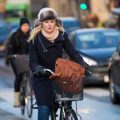 In winter (Copenhagen, Denmark)