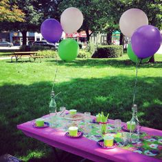 Birthday Party in the Park!