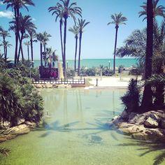 Parque El Palmeral -  #9 Outdoor Adventures Alicante, Spain #JetpacCityGuides #Alicante