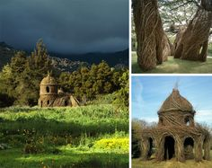 Patrick Dougherty is an artist who shapes living trees into amazing natural tree buildings.