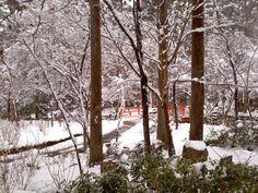 Kyoto Ohara