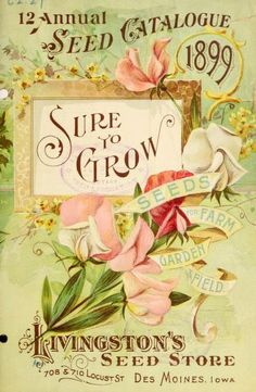 "Seed Catalogue cover, ""Sure to Grow seeds for farm, garden, and field."" Sweet peas. 1899."