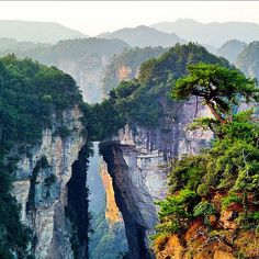 1000 Images About Zhangjiajie National Forest Park On Pinterest Zhangjiajie National Forest