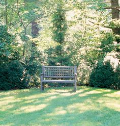 Create visual breathing space in your garden with a wooden bench set under shady trees where it's always cool.