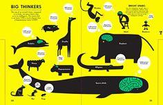 infographic - Google 搜尋