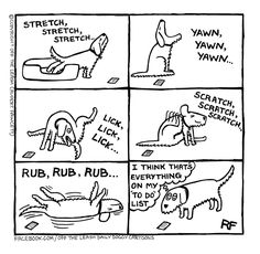 To Do's List - Off The Leash by Rupert Fawcett ~ dog humor