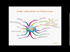 Comment synthétiser et prendre note avec le Mind Mapping - YouTube