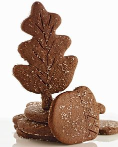 Chocolate Ginger Leaves and Acorns (Crisp and Crunchy)