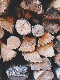 Firewood cut with hard working hands.