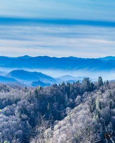 Our beautiful Smoky Mountains covered in snow! When will you visit Sevierville, TN and experience the Smokies for yourself? Photo copyright © Mike Sutton Jr., all rights reserved.