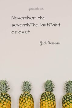 lemony snicket quotes books 6 Mr Darcy Quotes Of Jane Austen Alice Quotes, Ya Book Quotes, Hero Quotes, Quotes From Novels, Author Quotes, Literary Quotes, Reading Quotes, Happy Quotes, Reading Books