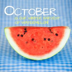 Our winter harvest for Watermelon occurs during October. For in Season Watermelons, I strongly suggest you pick one up at your local store today!