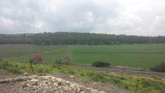 View from Megiddo