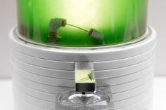 Bioreactor creates p