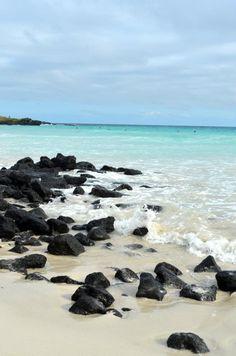 Encontré el paraiso y esta en Tortuga Bay - Islas Galapagos.