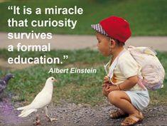 Einstein on formal education.
