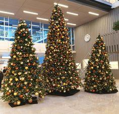 O denenneboom O denneboom....  . . . #ambius #kerstbomen #kerst #kerstdecoraties #sfeerbleveing