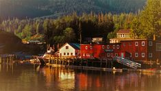 Telegraph Cove North Vancouver, Vancouver Island, Whale Watching Tours, Travel Advisory, Archipelago, British Columbia, Travel Usa, Kayaking, Tourism