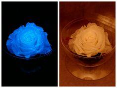 blue flAVATAR Preserved Rose