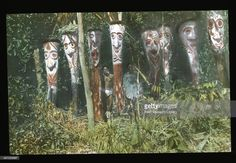 Two men stand amidst tree fern figures in the village, Papua New Guinea, June Ancestral figures are carved into the tree fern, and are stood on the edge of a dance ground. Get premium, high resolution news photos at Getty Images Tree Fern, Field Museum, Two Men, Ocean Art, Papua New Guinea, Portrait, Ferns, Man, The Outsiders