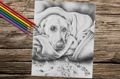 Dog In blanket coloring book page adult coloring book coloring page adult coloring page coloring book for adult printable dog art Coloring Coloring Pages coloring for adults coloring book adult coloring adult coloring pages coloring art printable coloring printable art coloring download instant download puppy dog art 1.00 USD #goriani