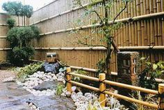 The Bamboo Garden Fence Unique Bamboo Post & Rail Fence Leafy Plants, Exotic Plants, Flowering Plants, Bamboo Garden Fences, Post And Rail Fence, Japan Garden, Japanese Bamboo, Landscaping Plants, Courtyard Landscaping