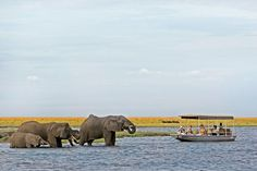 Viagens na África Subsaariana (Foto: Divulgação)