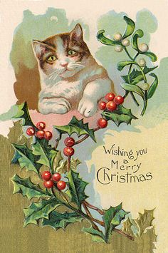 "Beautiful Vintage Christmas Cat  ""Wishing You A Merry Christmas"""