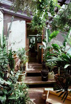 houten vloer, glazen dak: serre in de tuin