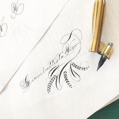 Un po' di divertimento con il flourishing su un nato di oggi. Sembra strano ma le cose che mi vengono peggio sono i puntini  oltreché la foglia di destra un po' moscia... ma vedo dei progressi soprattutto negli ovali  . . . #takeprideinpenmanship #spencerianjourney #calligraphypractice #calligraphy #handwriting #calligrafia #handlettering #flourishing #penmanship #ornatecapitals