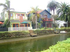 Venice Beach Canals how I love thee. Wheeled baby boy around for hours.